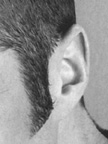 sideburn ULTIMATE